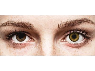 SofLens Natural Colors Dark Hazel - Sin graduación (2 Lentillas)