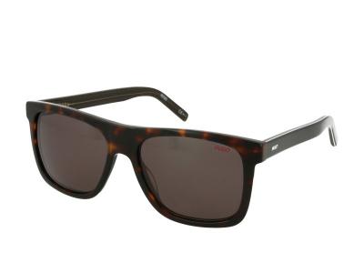 Gafas de sol Hugo Boss HG 1009/S 086/IR