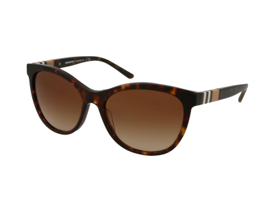 Gafas de sol Burberry BE4199 300213