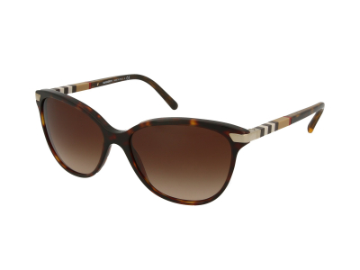 Gafas de sol Burberry BE4216 300213