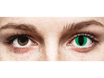 CRAZY LENS - Cat Eye Green - Diarias sin graduación (2 Lentillas)