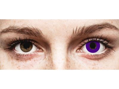 CRAZY LENS - Solid Violet - Diarias sin graduación (2 Lentillas)