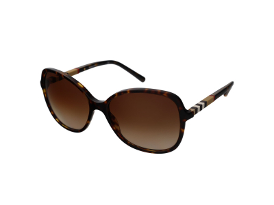 Gafas de sol Burberry BE4197 300213