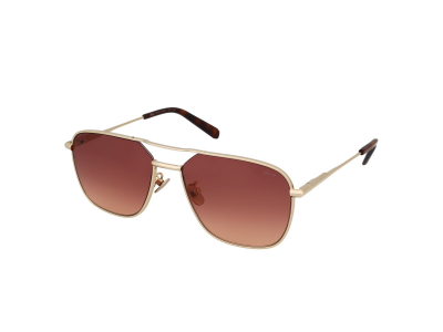 Gafas de sol Brioni BR0067S 004