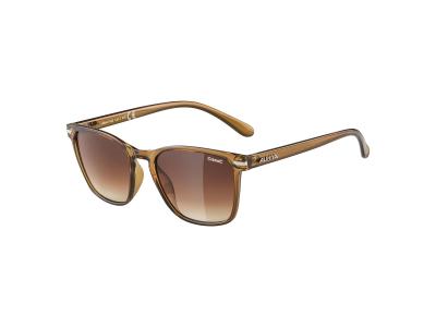 Gafas de sol Alpina Yefe Brown Transparent/Brown Gradient