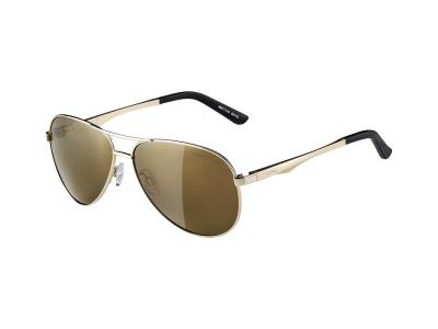 Gafas de sol Alpina A 107 Gold/Gold